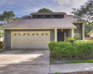 4809 Ridge Point Drive, Tampa image