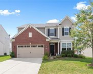 13972 Luxor Chase, Fishers image