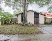 10311 Pennytree Place, Tampa image