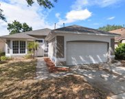 15843 Green Cove Boulevard, Clermont image