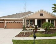 8309 Swiss Chard Circle, Land O Lakes image