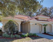 34300 Perfect Drive, Dade City image