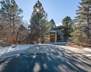 164 Glengarry Place, Castle Rock image
