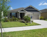 12368 Streambed Drive, Riverview image