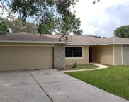 1419 Red Fox Court, Apopka image
