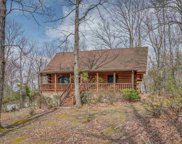 83 Luther Durham Road, Tryon image