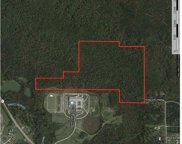 Maddox Farm Rd Unit 82.93 Acres, Odenville image