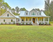 6492 Pepper Grass Trail, Ravenel image