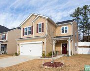 3941 White Kestrel Drive, Raleigh image
