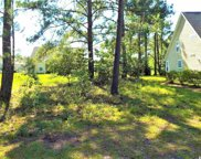 516 Oak Pond Ct., Conway image