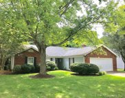 12501  Walkers Down Court, Charlotte image