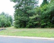 301 Red Spruce Lane, Greer image