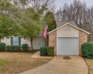 206 Cypress Cove Court, Greenville image