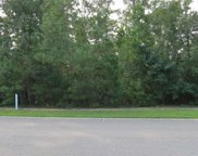 99 Knotty Pine Way, Murrells Inlet image