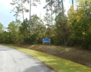 111 Coaches Creek Drive, Havelock image