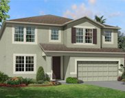 11416 Acacia Grove Lane, Riverview image
