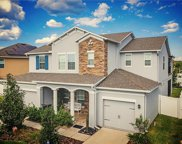 20155 Oakflower Avenue, Tampa image