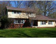 209 Woodcock Mtn Road, Washingtonville image