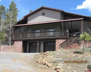 410 Terry Robison, Pagosa Springs image