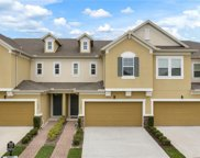 17427 Chateau Pine Way, Clermont image