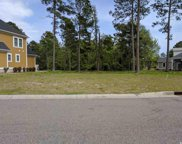 1114 Fiddlehead Way, Myrtle Beach image