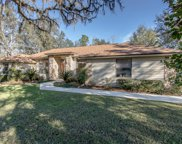 2925 SQUIRREL CT, Middleburg image