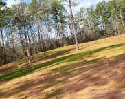 62345 & 62377 Pine Meadow  Road, Amite image
