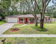 1168 CHATEAU PL, Orange Park image