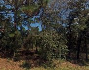 Sw Huckle Berry Lane, Dunnellon image