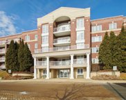 7091 West Touhy Avenue Unit 501, Niles image