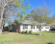 128 Briar Patch Drive, Beaufort image
