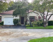 1303 Seagrape Cir, Weston image