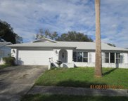 6228 Frost Drive, Tampa image