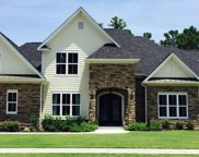1008 Blackskimmer Drive, Conway image