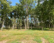 Lot 3 Winters Ranch Road, New Waverly image