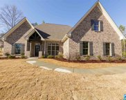 174 Willow Branch Ln, Chelsea image