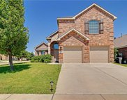 11756 Wild Pear Lane, Fort Worth image