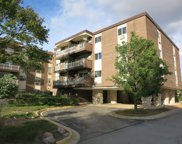 1311 South Finley Road Unit 209, Lombard image