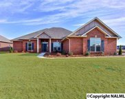40 SW Youpon Drive, Huntsville image