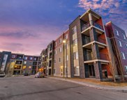 5 Saddlestone Way Ne Unit 313, Calgary image