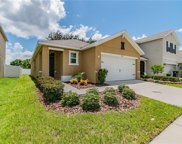 10135 Geese Trail Circle, Sun City Center image