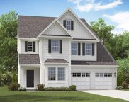 5203 American Holly, Ladson image