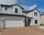 18209 Roseate Drive, Lutz image