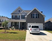 215 Rolling Woods Ct., Little River image