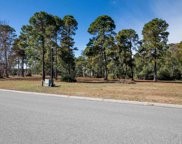 1344 Fiddlehead Way, Myrtle Beach image
