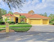 10236 Arbor Side Drive, Tampa image