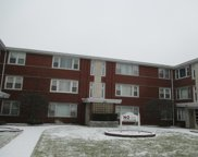 4139 West 79Th Street Unit 1S, Chicago image