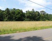Goat Run Honey Fork Road, Logan image