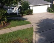10046 HEATHER LAKE CT W, Jacksonville image