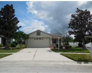 12652 Adventure Drive, Riverview image
